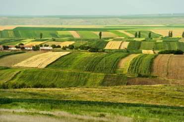 kredyt na gruntach rolnych